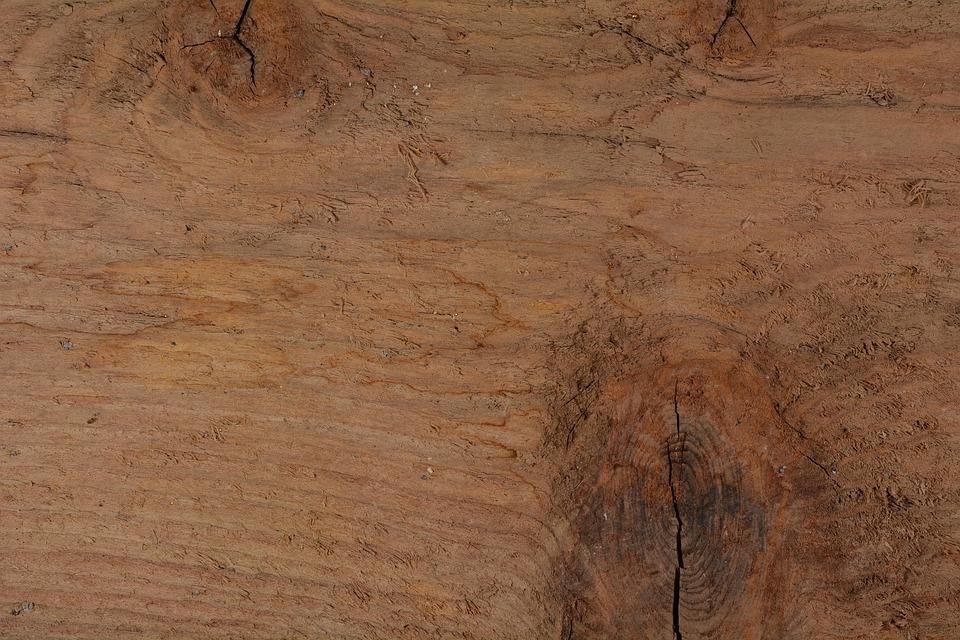 木製家具が虫にやられた時!正しい駆除や予防を紹介